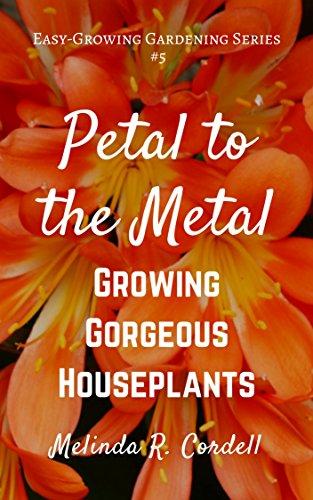 Flowering Violet African (Petal to the Metal: Growing Gorgeous Houseplants (Easy-Growing Gardening Series Book 5))