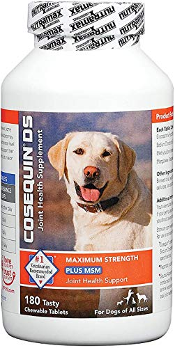Cosequin DS Plus MSM 360 Count Joint Health Supplement for Dogs Twin Pack (2 x 180 tablets) Chewable Tablets
