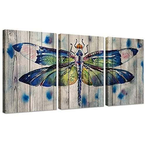 (Hello Artwork 3 Pieces Canvas Wall Art Watercolor Dragonfly On Wood Background Vintage Animals Painting Print On Canvas Stretched and Framed for Home Decoration Ready to Hang 16x24inchx3pcs)
