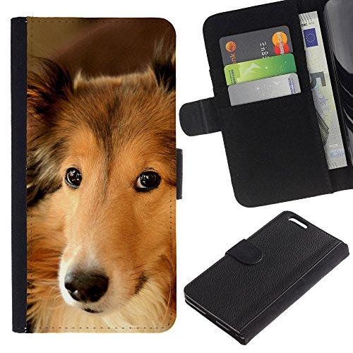 LASTONE PHONE CASE / Luxe Cuir Portefeuille Housse Fente pour Carte Coque Flip Étui de Protection pour Apple Iphone 6 PLUS 5.5 / Collie Shetland Sheepdog Canaan Dog