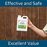 Wondercide - EcoTreat Outdoor Pest Control Spray