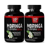 Fat Burner Pills for Belly Fat - Moringa OLEIFERA Extract 1200MG - Moringa Now - 2 Bottles (120 Capsules)