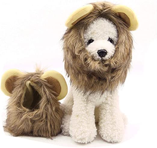 Lwieui Elizabeth Cuello Tire de la Tela Traje de Mascotas Peluca de Melena de león for Halloween Ropa for Mascotas Collar de recuperación de Mascotas Collar Elizabeth Prevenir (tamaño : S): Amazon.es: