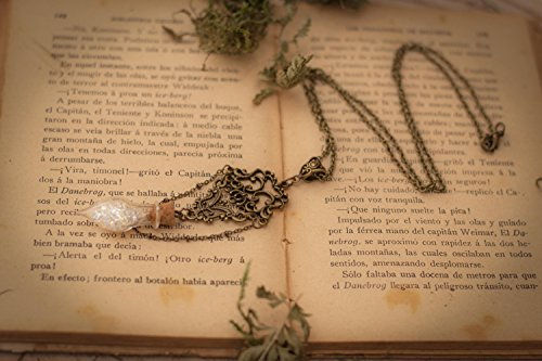 Collar Fantasía, Collar San Valentín, Collar Original, Collar botellita, Collar de hada, Regalo de San Valentín, Regalo para ella: Amazon.es: Handmade