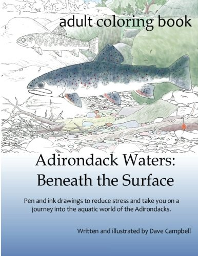 Adirondack Waters Beneath Dave Campbell product image