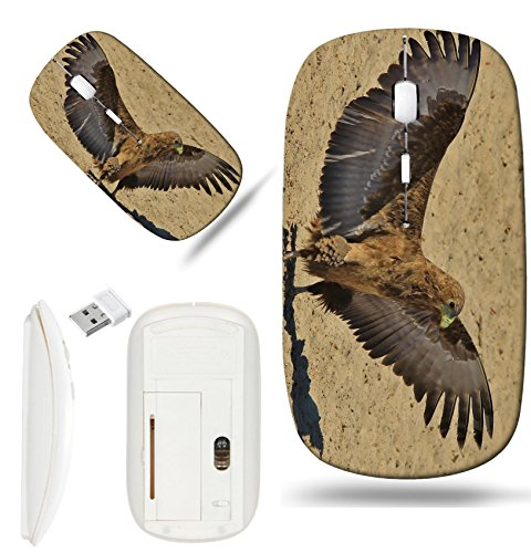 (Luxlady Wireless Mouse White Base Travel 2.4G Wireless Mice with USB Receiver, 1000 DPI for notebook, pc, laptop, macdesign IMAGE ID: 22010745 Bateleur Eagle Background Wild Birds and Raptor Wings ove)