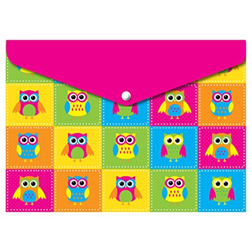 (Ashley Productions Owl Design Poly Folder with Snap, 9.5