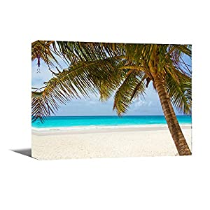 51Y5nR58yNL._SS300_ Best Palm Tree Wall Art and Palm Tree Wall Decor For 2020