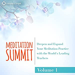 The Meditation Summit: Volume 1 Speech