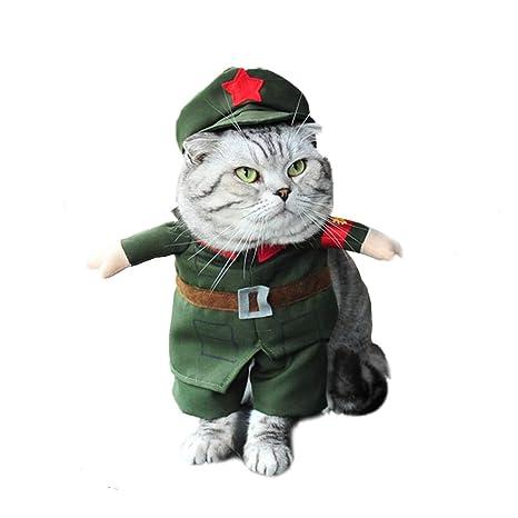 ZCY Perro Gato Ropa Disfraces Gracioso Perrito Ropa para Mascotas Camisetas Vestidos Equipar Abrigos Traje para