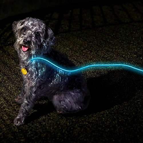 Nitey Leash Glow Dark Blue product image