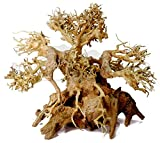 Bonsai Driftwood Aquarium Tree ABN (6 Inch Height) Natural, Handcrafted Fish Tank Decoration | Helps Balance Water pH Levels, Stabilizes Environments | Easy to Install