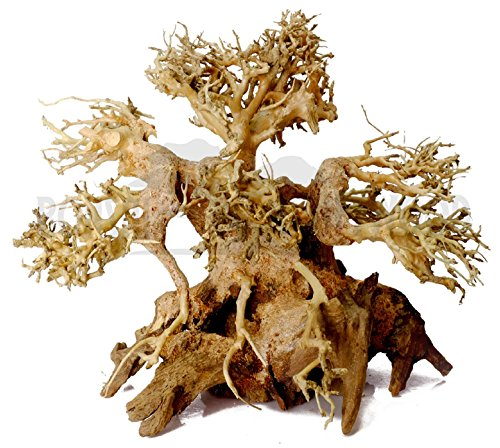 Bonsai Driftwood Aquarium Tree ABN (6 Inch Height) Natural, Handcrafted Fish Tank Decoration | Helps Balance Water pH Levels, Stabilizes Environments | Easy to Install by Bonsai Driftwood
