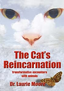 The Cat's Reincarnation: Transformative Encounters with Animals