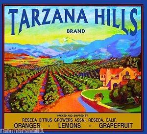 MAGNET Reseda Tarzana Hills California Vintage Orange Citrus Fruit Crate Magnet Print