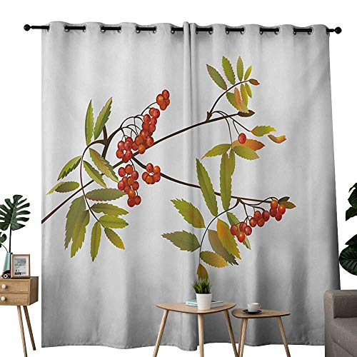 NUOMANAN Curtains Rowan,Fresh Organic Ashberry Tree Botanical Natural Gardening Plants Illustration,Green Red Brown,Treatments Thermal Insulated Light Blocking Drapes Back for Bedroom 52