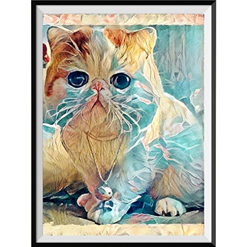 Fineser(TM) 5D Drilled Resin Full Diamond Painting Picture Diy Cross Stitch Embroidery Rhinestones By Number Kits Craft Cat 30X30CM