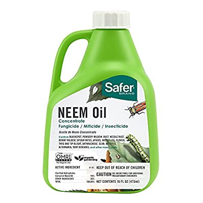 Safer Brand Neem Oil Concentrate, Green