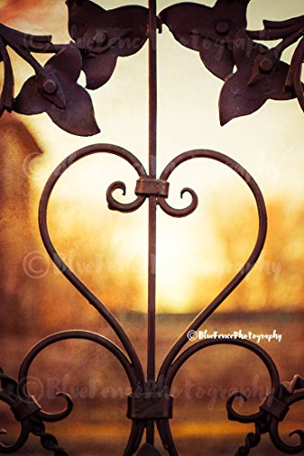 Country Cottage Fence - Heart, Wire Fence, Sunset, Gold, Yellow, Country Chic, Cottage, Home Decor, Shabby Chic Print, Countryside Photo, Wall Art, Wall Art, Sizes Available from 5x7 to 20x30.