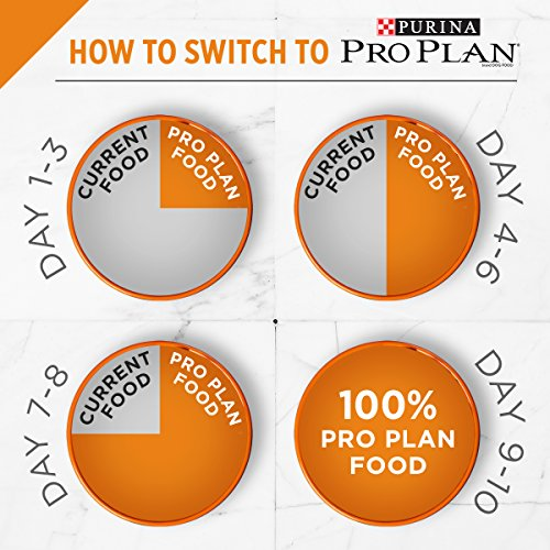 Purina Pro Plan With Probiotics Small Breed Dry Dog Food, SAVOR Shredded Blend Chicken & Rice Formula - 6 lb. Bag