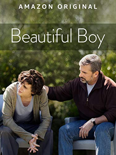 Beautiful Boy (4K UHD) (Best Shows Of 2019)