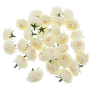 MagiDeal 30 Pieces 4cm Diameter Silk Camellia Flower Heads Buds DIY Crafts Wedding Decoration 77