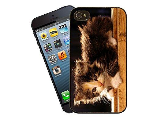 Katze 034 iPhone Fall - passen diese Abdeckung Apple Modell iPhone 5 / 5 s (nicht 5c) - von Eclipse-Geschenk-Ideen