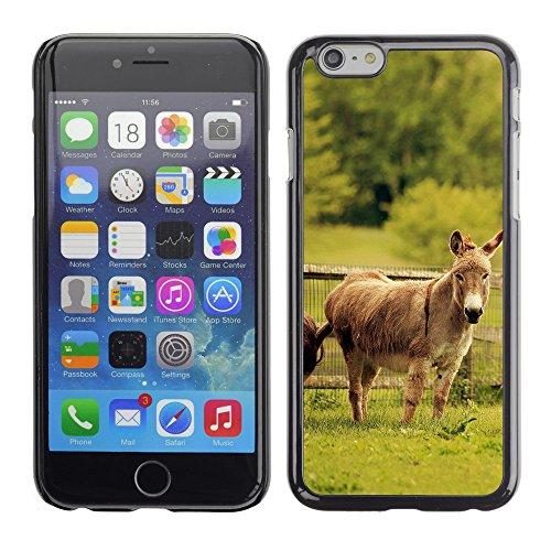 "Premio Sottile Slim Cassa Custodia Case Cover Shell // V00003254 ânes // Apple iPhone 6 6S 6G PLUS 5.5"""