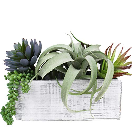 CYS EXCEL Indoor White Planter Box, Available, Wood Planter, Decorative Box, Succulent and Floral Arrangements, Box with Removable Plastic Liner, H:4