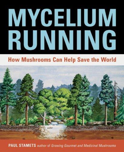 Mycelium Running: How Mushrooms Can Help Save the World Pdf