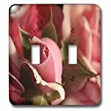 3dRose TDSwhite – Summer Seasonal Nature Photos - Floral Pretty Pink Flowers - Light Switch Covers - double toggle switch (lsp_284507_2)