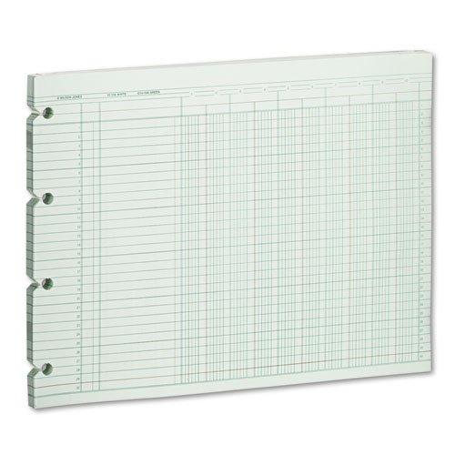 Green Columnar Sheets Single (Wilson Jones - Accounting Sheets, 10 Column, 9-1/4 x 11-7/8, 100 Loose Sheets/Pack, Green G10-10 (DMi PK)