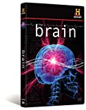 (DVD) The Brain Picture