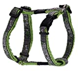 Rogz Fancy Dress Small 3/8-Inch Jellybean Adjustable Dog H-Harness, Lime Bone Design, My Pet Supplies
