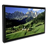 21'' HD LCD Screen Advertising Media Video Player - [Strong Metal Frame] - Compatible with SD card or USB 2.0 - Remote control Included