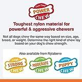 Nylabone Power Chew Extreme Chewing Power Chew