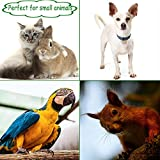 Professional Pet Nail Clippers. Pet Nail Clippers & Trimmer for Small Animals:Cat Dog Rabbit Bird Puppy Kitten Ferret Gerbils Rat. Cat Claw Clippers Scissors & Nail Cutter