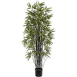Nearly Natural 5418 Black Bamboo Tree, 5-Feet, Green