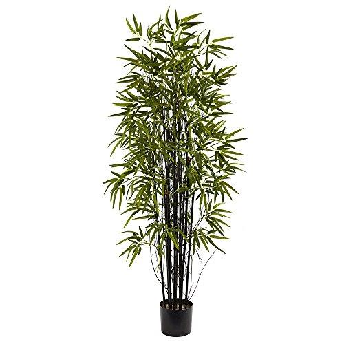 Black Bamboo Tree - Nearly Natural 5418 Black Bamboo Tree, 5-Feet, Green