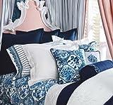 Best Lauren by Ralph Lauren Bed Skirts - Lauren By Ralph Lauren Palm Harbor Embroidered Bedskirt Review