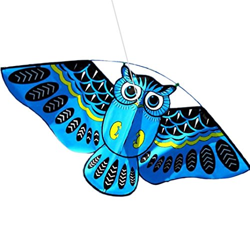 Transer 3D Owl Kite  Easy Flyer Toys For Kids Outdoor Flying Games And Activities  Blue