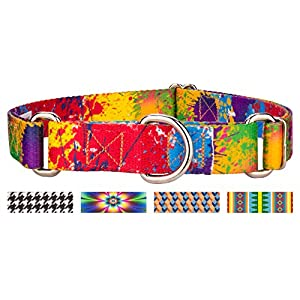 Country Brook Design Paint Splatter Martingale Dog Collar - Medium