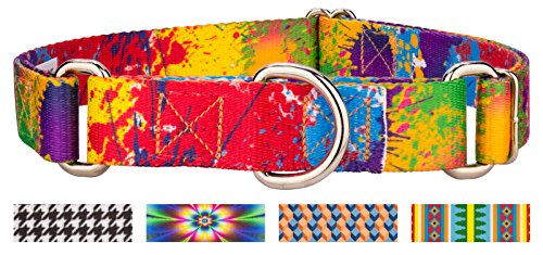 Country Brook Design | Paint Splatter Martingale Dog Collar - Medium