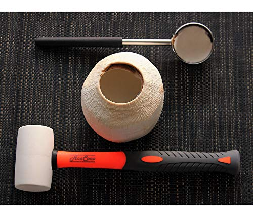 [Upgraded Version] Coconut Opening Tool Set. Food Grade Stainless Steel Cutter and Wooden Hammer to open Young Coconuts - Safe, Easy, Durable. Premium quality Coco Jack to make a large hole in coconut