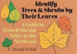 img - for Identify Trees and Shrubs by Their Leaves by Edward Knobel (1972-06-01) book / textbook / text book