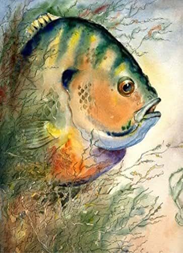 Amazon Com Bluegill Watercolor Painting Art Print 8x10