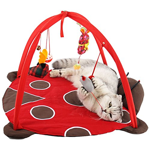 Itsmypet Pet cats playing bed tent cat litter toy puzzle funny cat toys (red) by Itsmypet