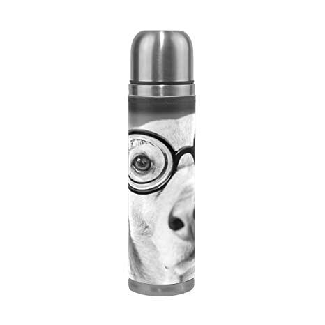 BENNIGIRY - Botella de agua de acero inoxidable aislada al ...