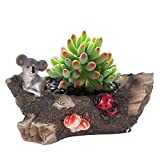 Vencer Succulent Planter and Air Plant Pot,Office Desktop Potted Stand,Home & Office Decor Accent,New Design,Koala,VF-077