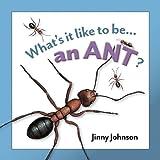 An Ant, Jinny Johnson and Desiderio Sanzi, 1607531836